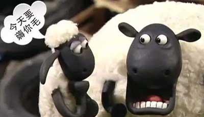 薅羊毛是什么梗?如何薅羊毛赚钱?  第1张